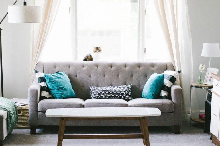 Designerkissen – Hingucker auf Sofa, Couch und Sessel